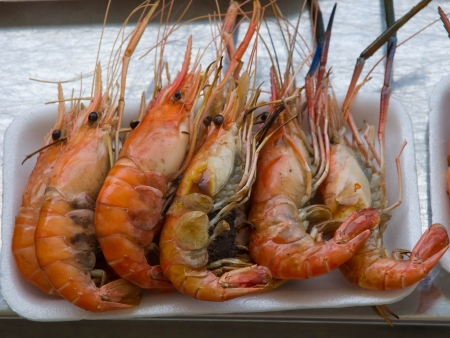 Shrimp photo