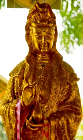 Statue of godness Guan Yin in Lamphun,north of thailand