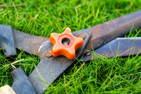 closed up: Closed up grass shears on the green grass Stock Photo