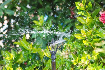 sprinkle system: A drop of water blur from springkler in garden