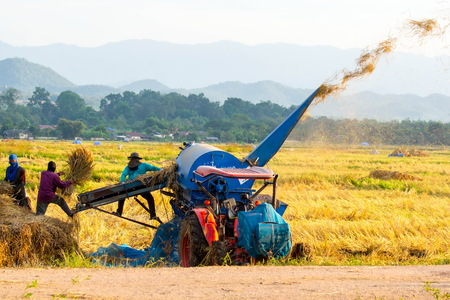 rural areas: Threshing machine working in rural areas in Lampang Thailand