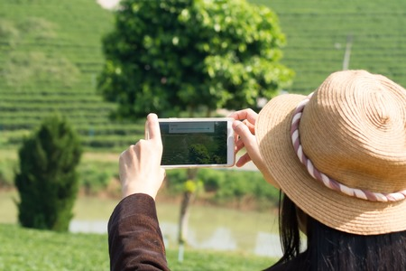 Using a cell phone, taking pictures of a tea plantation