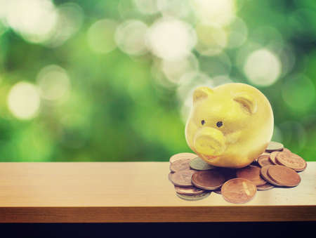 business savings: piggy bank and gold coins on bokeh tree background