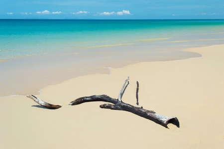 Strand tropischen Meer mit klarem Himmel Lizenzfreie Bilder