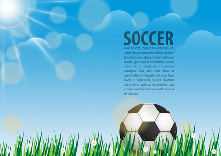 footie: Soccer ball on grass on blue sky background