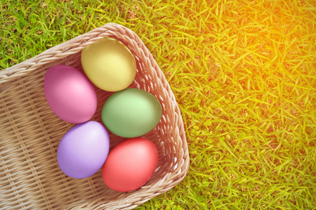 Colorful Easter Eggs on grass background with sun lighting