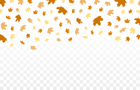 Herbst fallen Blätter Muster auf transparenten Hintergrund. Vector herbstlichen Laub Fall von Ahorn, für Herbst-Design Illustration