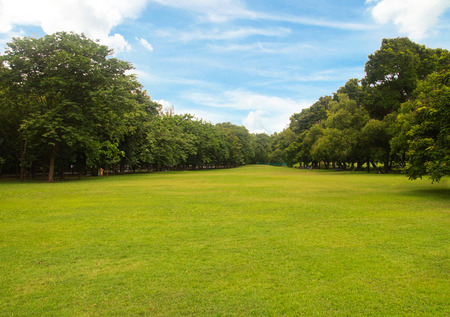Green grass green trees in beautiful park white Cloud blue sky in noon. Stock Photo