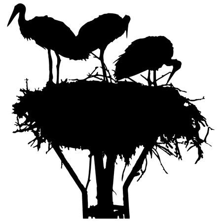 Vector silhouette of storks in the nest on white background. Illustration