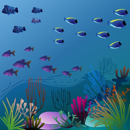 elég víz alatti környezetben, színes növényzet - eps10 kép