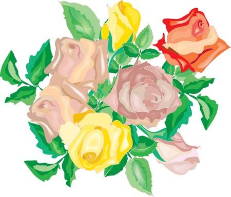 orange rose: Bunch of roses
