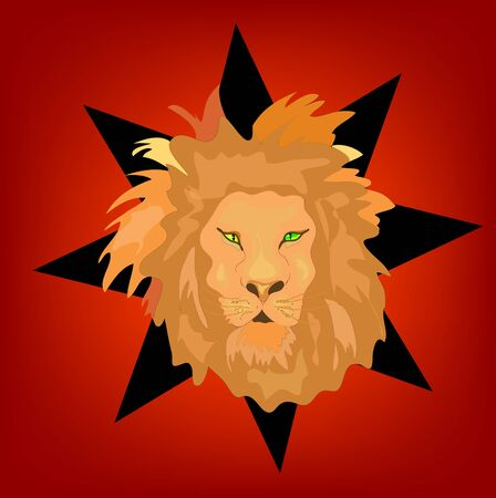 Lion Illustration