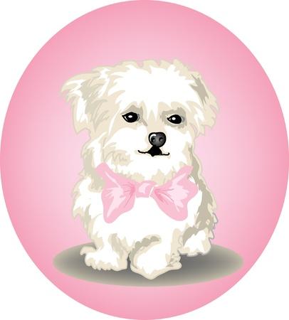 cartoon puppy: Cute little puppy