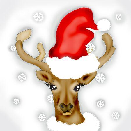 rudolph: Rudolph Stock Photo