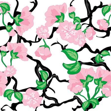 Cherry flowers seamless pattern Stock Vector - 18274176