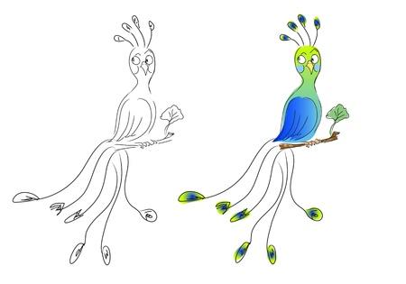 humoristic: Peacock