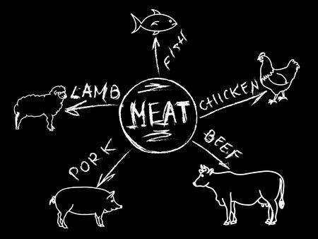 Chalk meat infographic menu Illustration