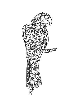 Parrot zentangle