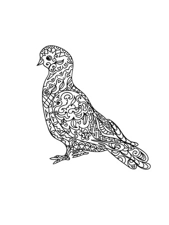paloma caricatura: Zentangle Pigeon Vectores