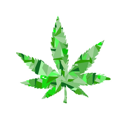 Cannabis  low poly leaf Vector