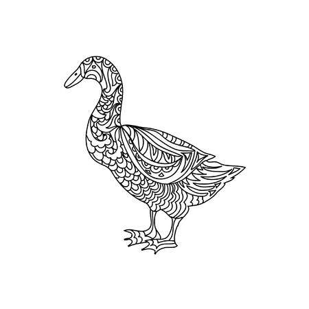 animal farm duck: Duck zentangle coloring page