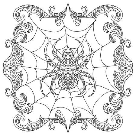 ornate border: Spider  coloring page