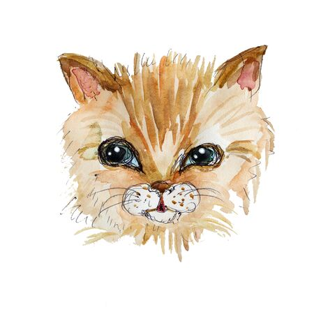 aquarelle painting art: Kitten watercolor and ink head illustration