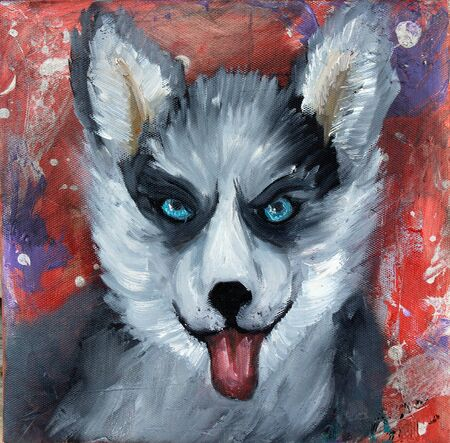 husky puppy: Husky puppy oil painting  on abstract background
