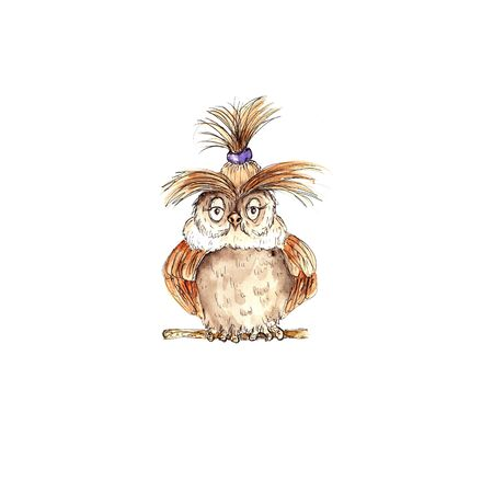 Watercolor hand drawn funny owl  illustration isolated on white background