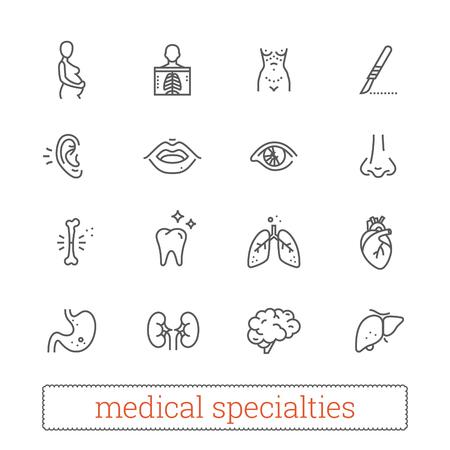 Medicine specialties thin line icons Vectores