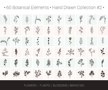 Botanical vector design set. Branch, flower, herb icons for floral wreaths, borders,  designs, wedding invitation, flyers, greeting card, textile print. Hand drawn botanical illustrations clipart.