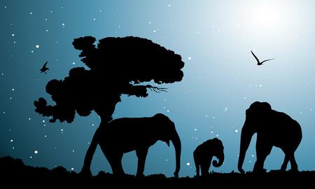 of elephants, vector illustration Vector