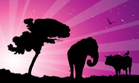 purple sunset over africa, vector illustration Stock Vector - 3688459