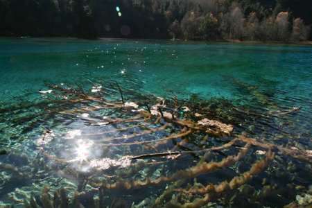 Starry reflection on five-flower lake, Jiuzhaigou photo
