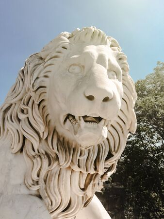 white sculpture - close-up of a lion's head with open maw and mane in the sunlight