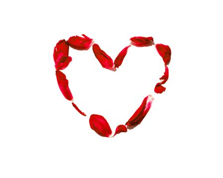 heart of the red petals isolated on white background. Valentines day blossom romance. shaped heart with flowers. Romantic scene. Passion Composition.
