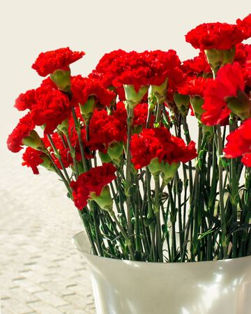Bouquet of red carnations in a plastic vase with sunshine. Sale on the street during the May 9 holiday of Russia with sunshine. Greeting card for the Victory Day on May 9, vertical frame. Dianthus caryophyllus