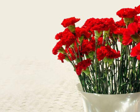 Bouquet of red carnations in a plastic vase isolated on a white background with sunshine. Sale on the street during the May 9 holiday of Russia with sunshine. Greeting card for the Victory Day on May 9, vertical frame. Dianthus caryophyllus 免版税图像