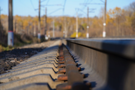forest railroad: Railroad tracks on the background of autumn forest