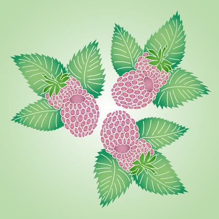 fondo natural: Tres frambuesa fresca. Natural de fondo en colores brillantes.