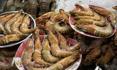 fishery products: Street shop with fresh shrimp Stock Photo