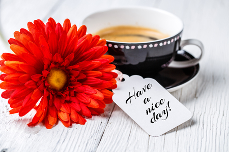 energizing: Red gerbera, coffee and postcard