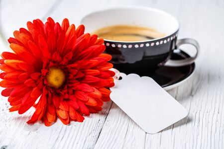 Flower and cup of drink
