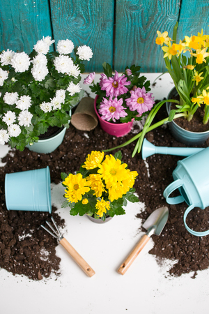 Image of soil, watering can, flower pot, shovel, rake 免版税图像