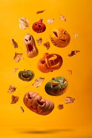 Several halloween pumpkins and dry leaves on empty orange background in studio Stok Fotoğraf