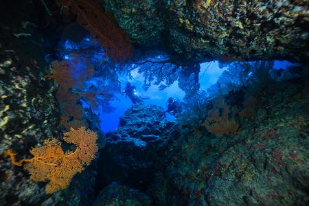 picada: buceo en cuevas Foto de archivo