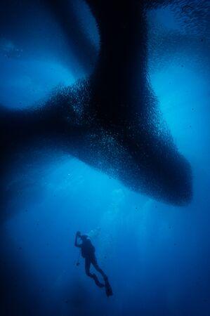 blauwe zee Stockfoto