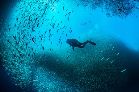 Man duiken in de blauwe oceaan met een school van vis Stockfoto