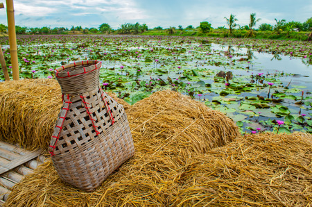 Fishing creel, Bamboo basket put the fish on Rice straw Balcony with a Lotus pond.