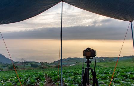 Camera and Farmland vegetation on the hills of northern Thailand. 版權商用圖片
